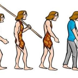 postura corporala